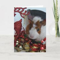 Guinea Pig Christmas Holiday Card