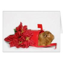 Guinea Pig Christmas mail Card