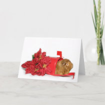 Guinea Pig Christmas mail Holiday Card
