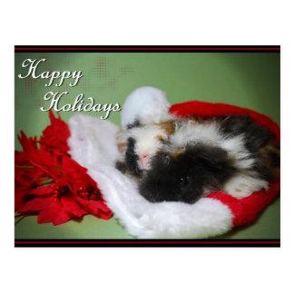 """""""Guinea Pig Christmas"""" Photo Card Postcards"""