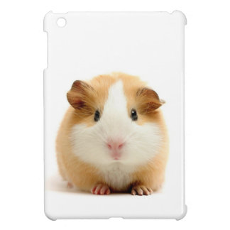guinea pig cover for the iPad mini