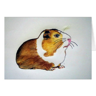 guinea pig drawing card