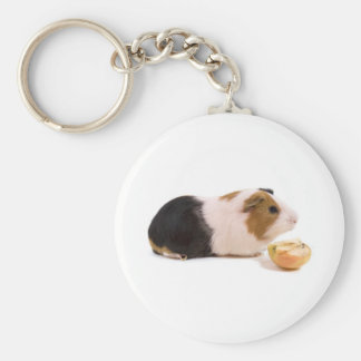 guinea pig eating year APPLE Basic Round Button Keychain