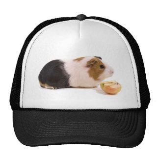 guinea pig eating year APPLE Trucker Hats