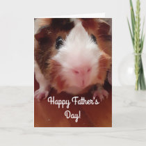 Guinea Pig Happy Father's Day Card