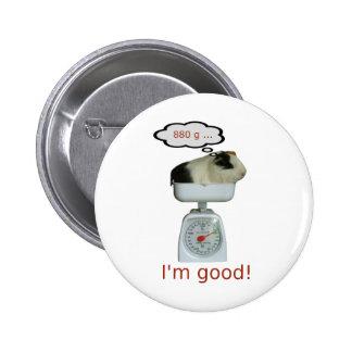 Guinea Pig Health Button