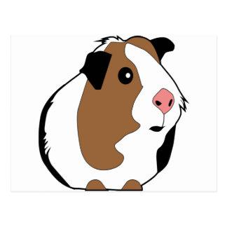 Guinea Pig Illustration Postcard
