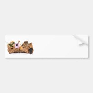 guinea pig in a basket bumper sticker