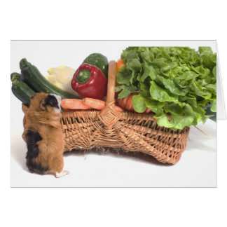 guinea pig in a basket greeting card