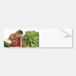 guinea pig in a basket of vegetables bumper sticker