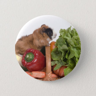 guinea pig in a basket of vegetables button