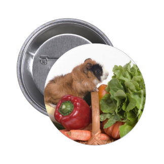 guinea pig in a basket of vegetables pinback buttons