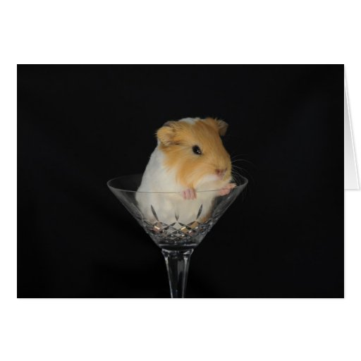 Guinea pig in a wine glass greeting card