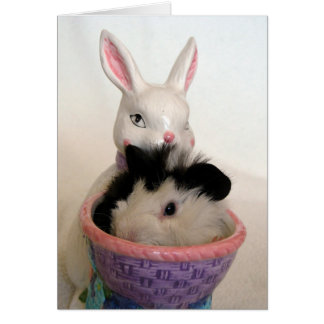 Guinea Pig in Bunny Planter For Easter Card
