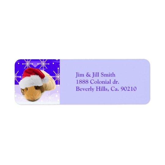 Guinea Pig In Santa Hat With Snowflakes Label