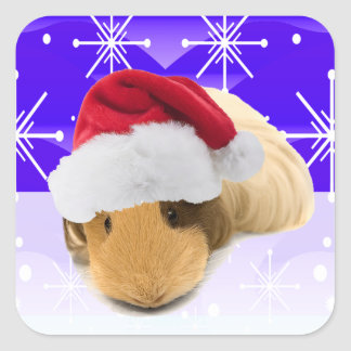 Guinea Pig In Santa Hat With Snowflakes Square Sticker