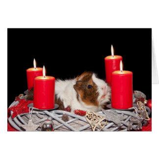 Guinea Pig in Wreath Christmas Card