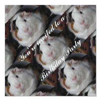 Guinea pig invite