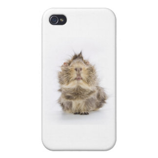 Guinea Pig iPhone 4/4S Case