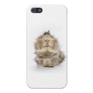 Guinea Pig iPhone SE/5/5s Cover