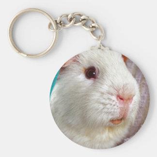 guinea pig key ring keychain