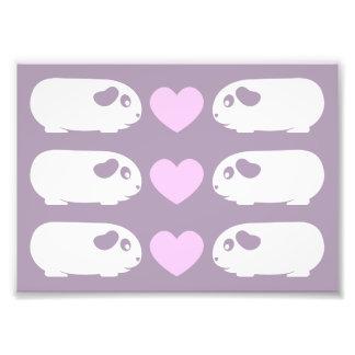 Guinea Pig Love Photo Print