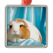 guinea pig metal ornament