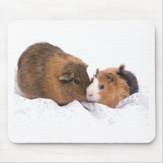 guinea pig mouse pad