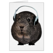Guinea Pig Music Pet