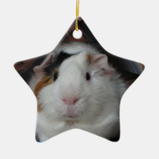 Guinea pig Double-Sided star ceramic christmas ornament