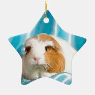 guinea pig Double-Sided star ceramic christmas ornament