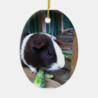 guinea pig Double-Sided oval ceramic christmas ornament