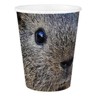 Guinea Pig Paper Cup