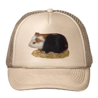 Guinea Pig Pet Mesh Hat