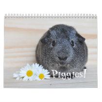 Guinea Pig Photographs Calendar