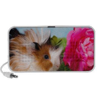 guinea pig portable speaker