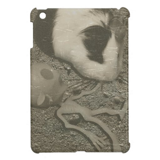 Guinea Pig Roswell Aliens Case For The iPad Mini