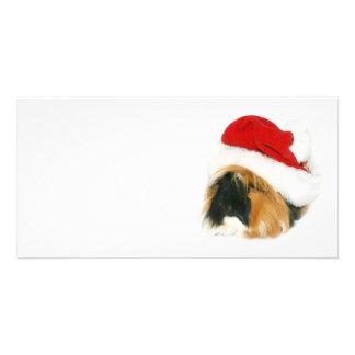 Guinea pig Santa Card