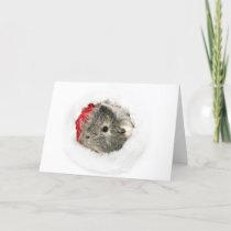 Guinea Pig Santa Holiday Card