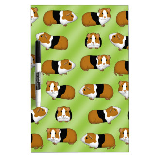 Guinea pig selection Dry-Erase board