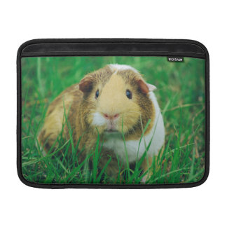 Guinea pig sleeve for MacBook air