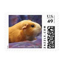Guinea Pig Stamps