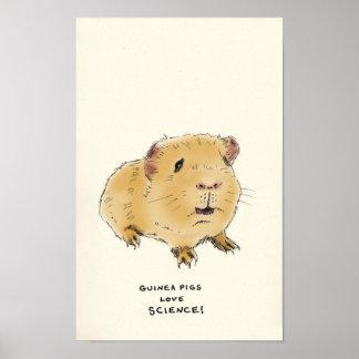guinea pig trivia posters