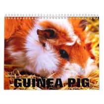 Guinea Pig Wall Calendar 2020