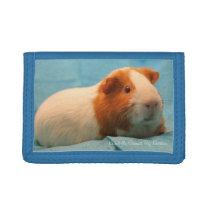 Guinea Pig Wallet