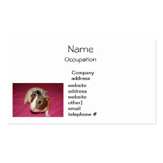 Guinea Pig With Bow 2 Business Card