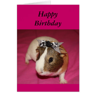 Guinea Pig With Bow 2 Card