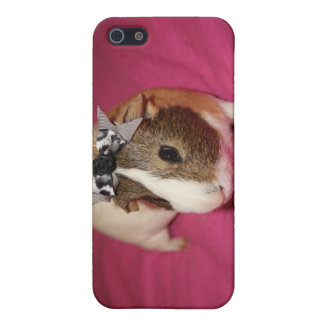 Guinea Pig With Bow 2 Case For iPhone 5