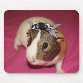 Guinea Pig With Bow 2 Mouse Pad