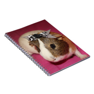 Guinea Pig With Bow 2 Note Book